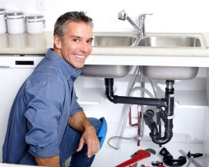 Picture of a professional plumber